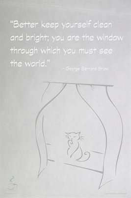You are the Window