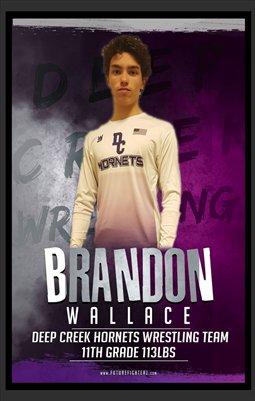 Brandon Wallace DC 5X8 Prints #2