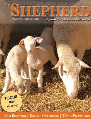 The Shepherd September 2019