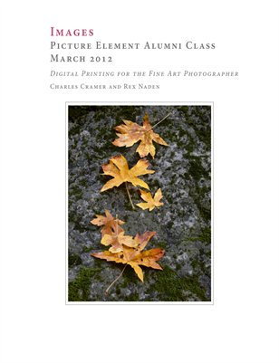 Picture Element Alumni Class, March 2012