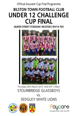 Bilston Town FC Under 12 Challenge Cup Final 2014/2015