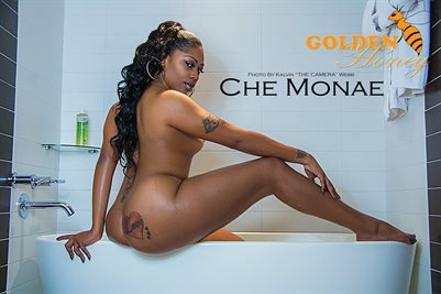 Che Monae Poster 3
