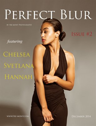 Perfect Blur Issue 2