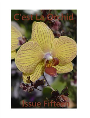 C'est La Orchid Issue Fifteen