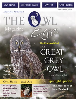 The Owl Eye Magazine Winter Issue 6
