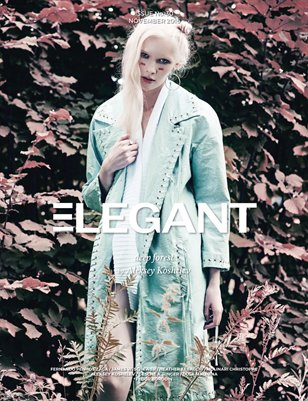 Fashion #14 (November 2016)