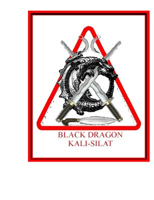 Black Dragon Kali-Silat Training Outline