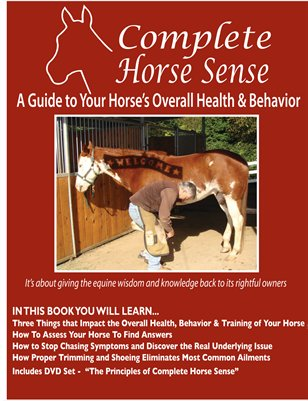 A Guide to Your Horse's Overall Health & Behavior