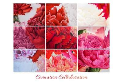 Project #1 Carnation Collaboration