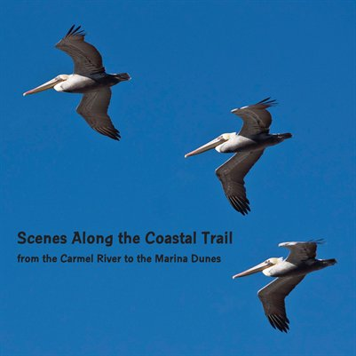 Scenes Along the Coastal Trail