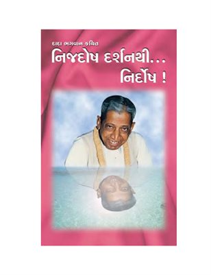 The Flawless Vision (In Gujarati)