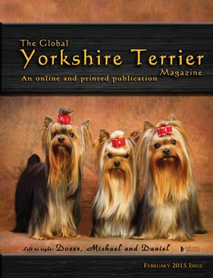 The Global Yorkshire Terrier Magazine - February 2015