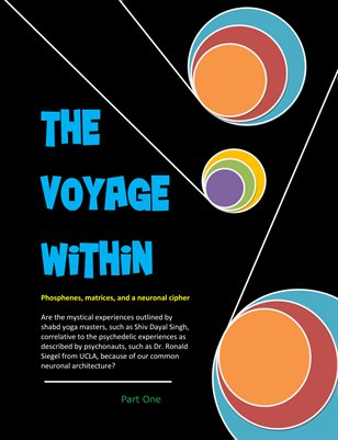 The Voyage within: Fire in the Brain