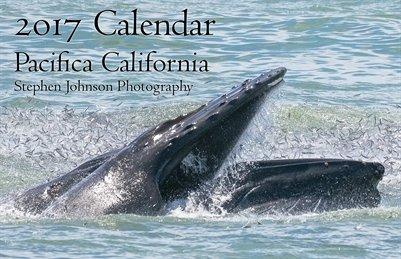 2017 Pacifica Calendar
