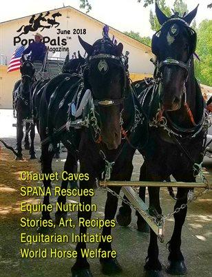 June 2018 Pony Pals Magazine  - Vol.8 #1