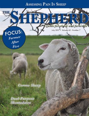 The Shepherd July 2017