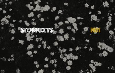 Stomoxys Nr.1