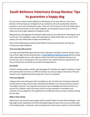 South Bellmore Veterinary Group Review: Tips to guarantee a happy dog