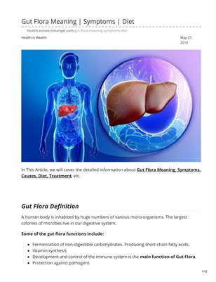 Gut Flora Meaning Test and Diet