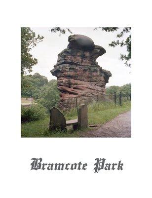 Bramcote Park 1