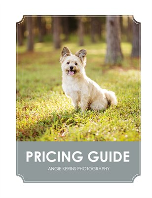 Angie Kerins Photography Pricing Guide