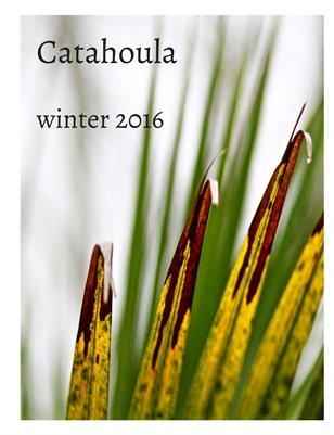 Catahoula Winter 2016