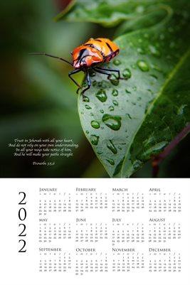 2022 Calendar - Proverbs 3:5,6 - Bug in Rain