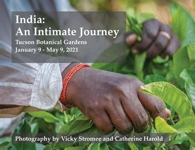 India: An Intimate Journey
