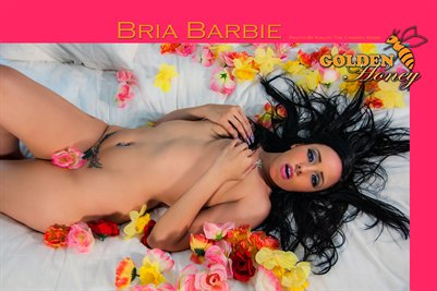 Bria Barbie 3