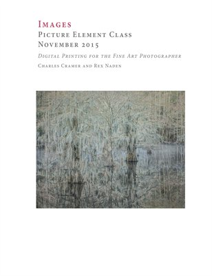 Picture Element Class, November 2015