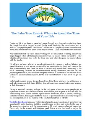 The Palm Tree Resort: Where to Spend the Time of Your Life
