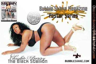 Chocolate Bunny Aka The Black Stallion Poster