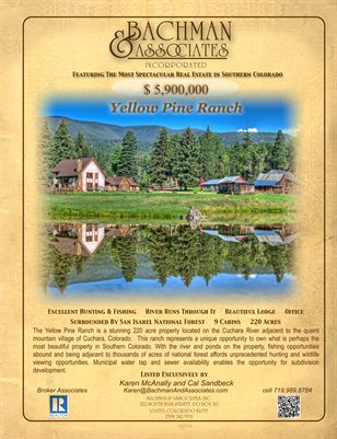 Yellow Pine Ranch Enhanced Brochure