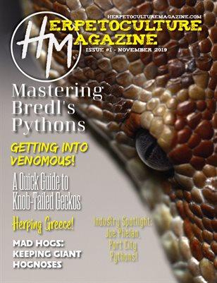 Issue #1 - November 2019