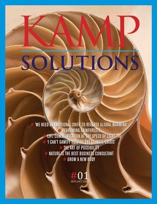KAMP SOLUTIONS 1