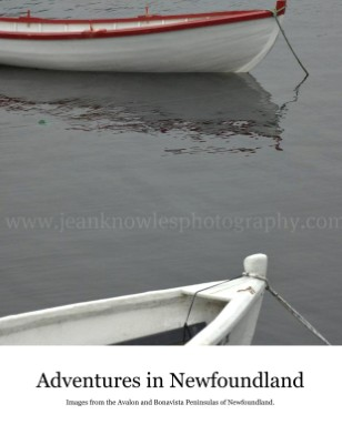 Adventures in Newfoundland