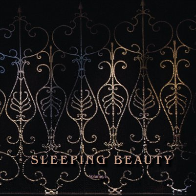 Sleeping Beauty Volume 1