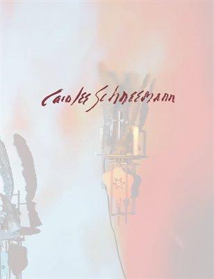 """Carolee Schneemann """"Flange""""  'T' Space. Vol. 9"""