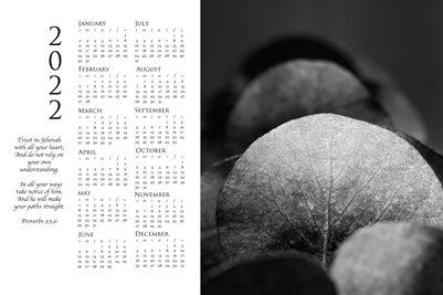 2022 Calendar - Proverbs 3:5,6 - Eucalyptus II BW