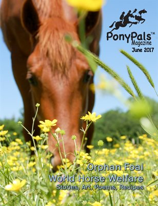 June 2017 Pony Pals Magazine - Vol. 7 #1