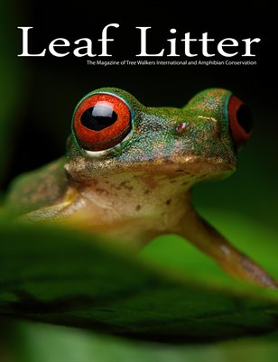 Leaf Litter (Vol. 3, Issue 2)