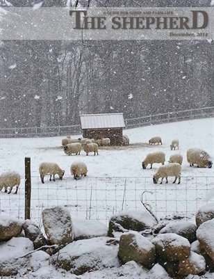 The Shepherd December 2014