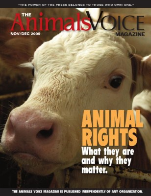 Animal Rights: What They Are and Why They Matter