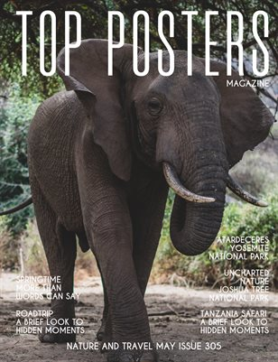 TOP POSTERS MAGAZINE- NATURE AND TRAVEL, MAY (Vol 305)