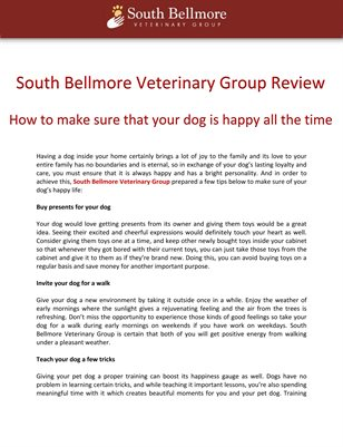 South Bellmore Veterinary Group Review: How to make sure that your dog is happy all the time