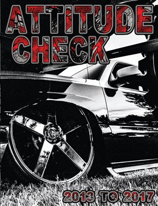 ATTITUDE CHECK 2013-2017