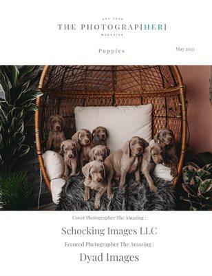 Puppies | May 2021