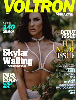 Voltron Issue 1 - Skylar Walling/Ohrangutang