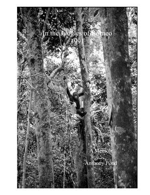 In the Jungles of Borneo 1991