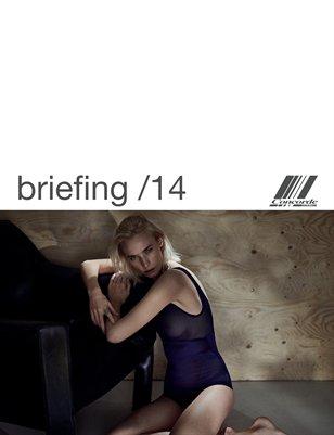 Concorde briefing /14